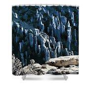Chiricahua Pinnacles D Shower Curtain