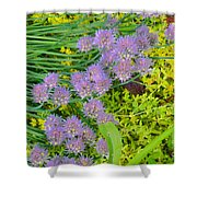Chives 3 Shower Curtain