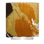 Chocolate And Caramel   Shower Curtain