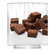 Chocolate Brownies Shower Curtain