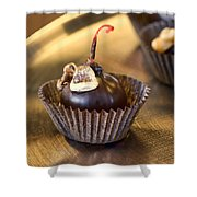 Chocolate Covered Shower Curtain