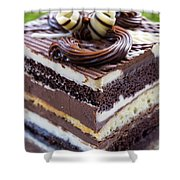 Chocolate Temptation Shower Curtain