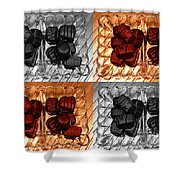 Chocolates Shower Curtain by Barbara Griffin