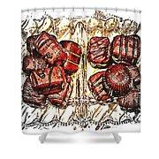 Chocolates - Illustration - Dish - Candy Shower Curtain