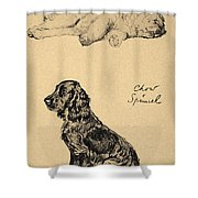 Chow And Spaniel, 1930, Illustrations Shower Curtain by Cecil Charles Windsor Aldin