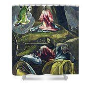 Christ In The Garden Of Olives Shower Curtain