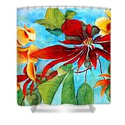 Christmas All Year Long Shower Curtain