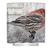 Christmas Blessings Finch Greeting Card Shower Curtain
