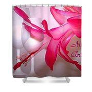Christmas Cactus And Two Glasses - Merry Christmas Shower Curtain