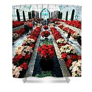 Christmas Card Sunken Garden Shower Curtain