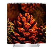 Christmas Cone Shower Curtain