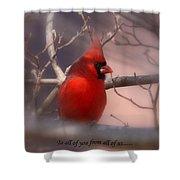 Christmas Greetings - Cardinal Shower Curtain