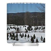 Christmas In March Shower Curtain