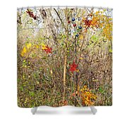 Christmas In Nature Shower Curtain