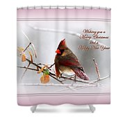 Christmas In Pink - Cardinal Christmas Shower Curtain