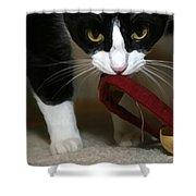 Christmas Kitty Shower Curtain
