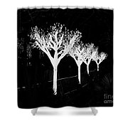 Christmas Lights In Black And White Shower Curtain