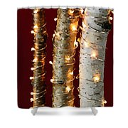 Christmas Lights On Birch Branches Shower Curtain by Elena Elisseeva