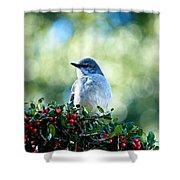 Christmas Mockingbird Shower Curtain