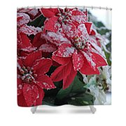 Christmas Poinsettia Flowers Shower Curtain