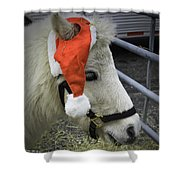 Christmas Pony Shower Curtain