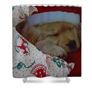 Christmas Pup Shower Curtain