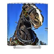 Christmas Shire 2 Shower Curtain
