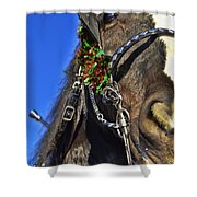 Christmas Shire Shower Curtain