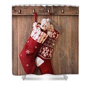 Christmas Stockings Shower Curtain