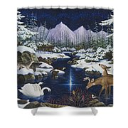 Christmas Wonder Shower Curtain