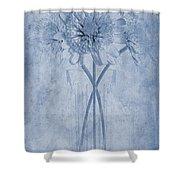 Chrysanthemum Cyanotype Shower Curtain by John Edwards