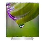 Raindrop Bud Shower Curtain
