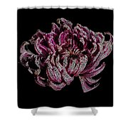 Chrysanthemum Scribble Shower Curtain