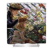Chrysanthemums, 1890 Shower Curtain