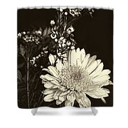 Chrysanthimum Shower Curtain