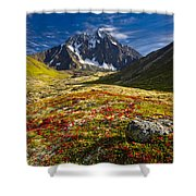 Chugach Autumn Shower Curtain