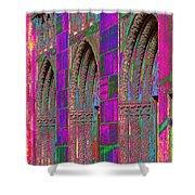 Church Doors Pop Art Shower Curtain