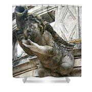 Church Gargoyle Shower Curtain