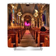 Church Of Saint Louis Shower Curtain