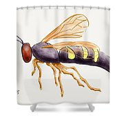 Cicada Killer Wasp Shower Curtain by Stacy C Bottoms