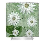 Cinco Shower Curtain by John Edwards