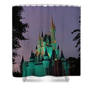 Cinderella Castle At Night  Shower Curtain