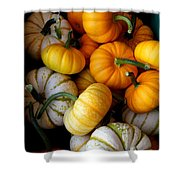 Cinderella Pumpkin Pile Shower Curtain by Kerri Mortenson