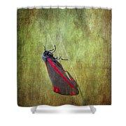 Cinnabar Moth Art Texture Wall Decor. Shower Curtain