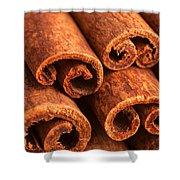 Cinnamon - Cinnamomum Shower Curtain