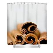 Cinnamons And Clove Shower Curtain