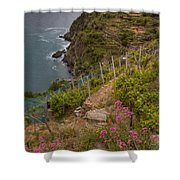 Cinque Terre Terraces In Spring Shower Curtain