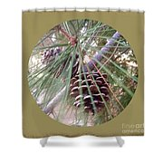 Circle Of Cones  Shower Curtain
