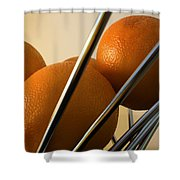 Circles And Lines Shower Curtain