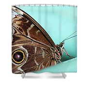 Circles And Patterns Shower Curtain